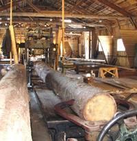 Лесопильное и деревообрабатывающее производство